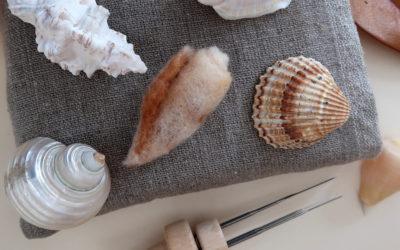Créer un coquillage en laine cardée niveau 1